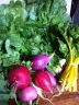 CSA radishes and yellow chard
