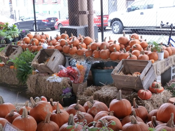 The Pumpkin Spread at the East Harlem Harvest Festival