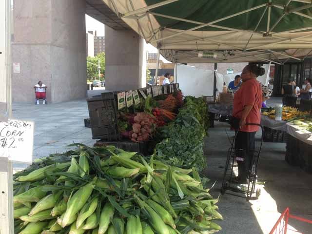 corn at 125th St farmers market