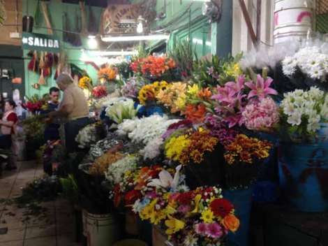 Flower Stand at Central Market